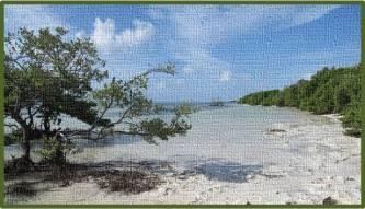 Annes-Beach